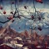 Абхазія взимку: фото, відгуки. Що подивитися в Абхазії взимку?