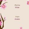 Арабські чоловічі імена. Красиві сучасні імена для хлопчиків