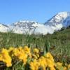 Цахвоа - найвища гора в Краснодарському краї