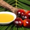 Для чого додають в продукти харчування та дитячі суміші пальмова олія? З чого виробляють цей продукт, у чому його користь і шкода?