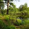 Де провести незабутній відпочинок в Рязанській області