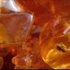 Янтарна кислота: шкода і користь. Для чого потрібна бурштинова кислота рослинам? Для чого потрібна бурштинова кислота людині?