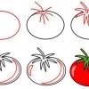 Як намалювати помідор олівцем і аквареллю, в розрізі і цілий?