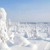 Карелія взимку: пам'ятки, відпочинок, природа та відгуки