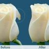 Лабіопластика: до і після. Відгуки, ціни