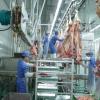 Устаткування для бійні худоби: опис, характеристики та відгуки