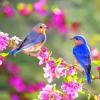 Прислів'я про пори року: весна, літо, осінь і зима