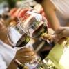Скільки алкоголь тримається в сечі і в крові людини?