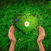 """Твір на тему """"Любов до природи"""""""