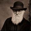 Внесок Дарвіна в біологію коротко. Який внесок у розвиток біології вніс Чарльз Дарвін?